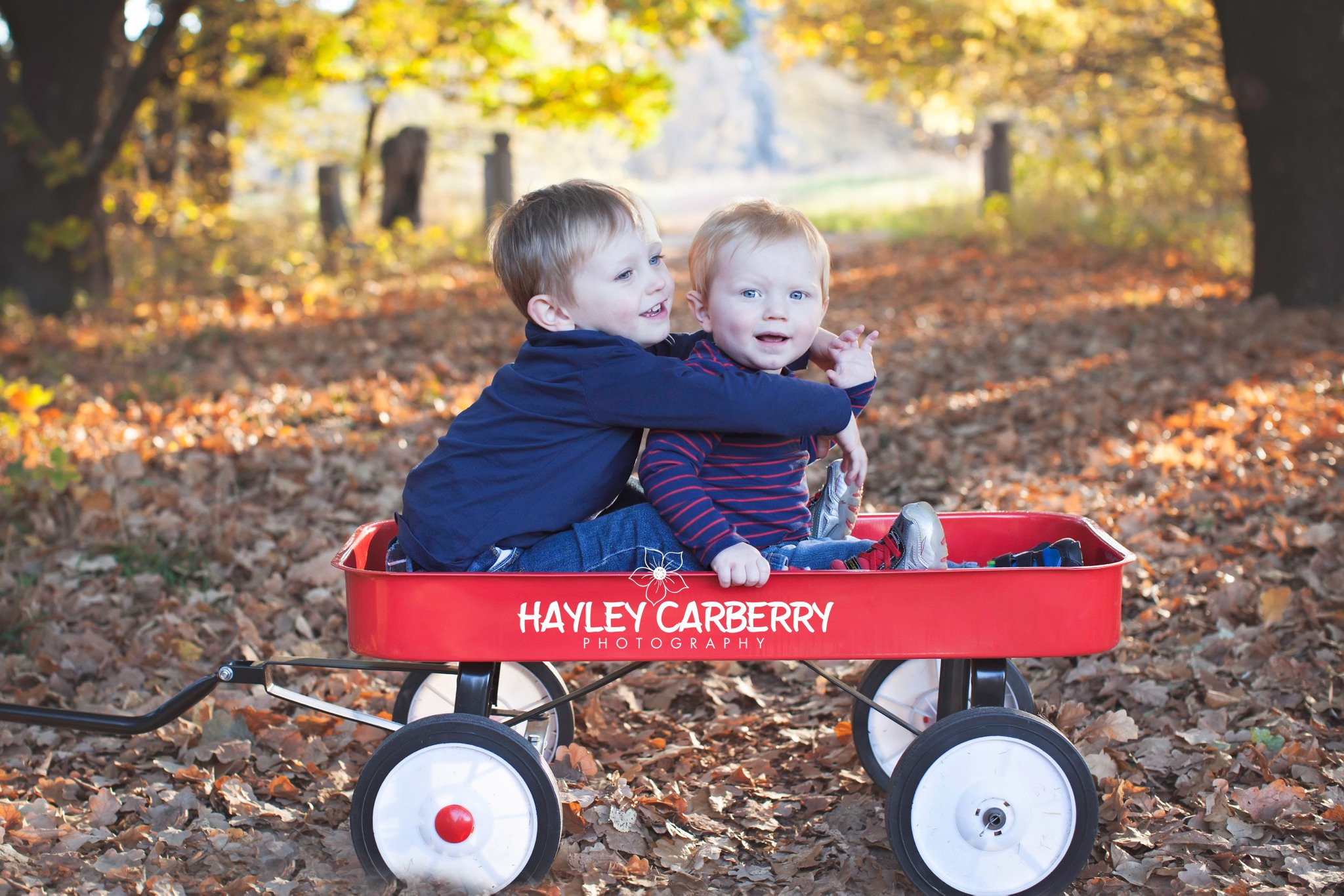 Canberra Babies Newborn Family Children Autumn Portrait Photographer
