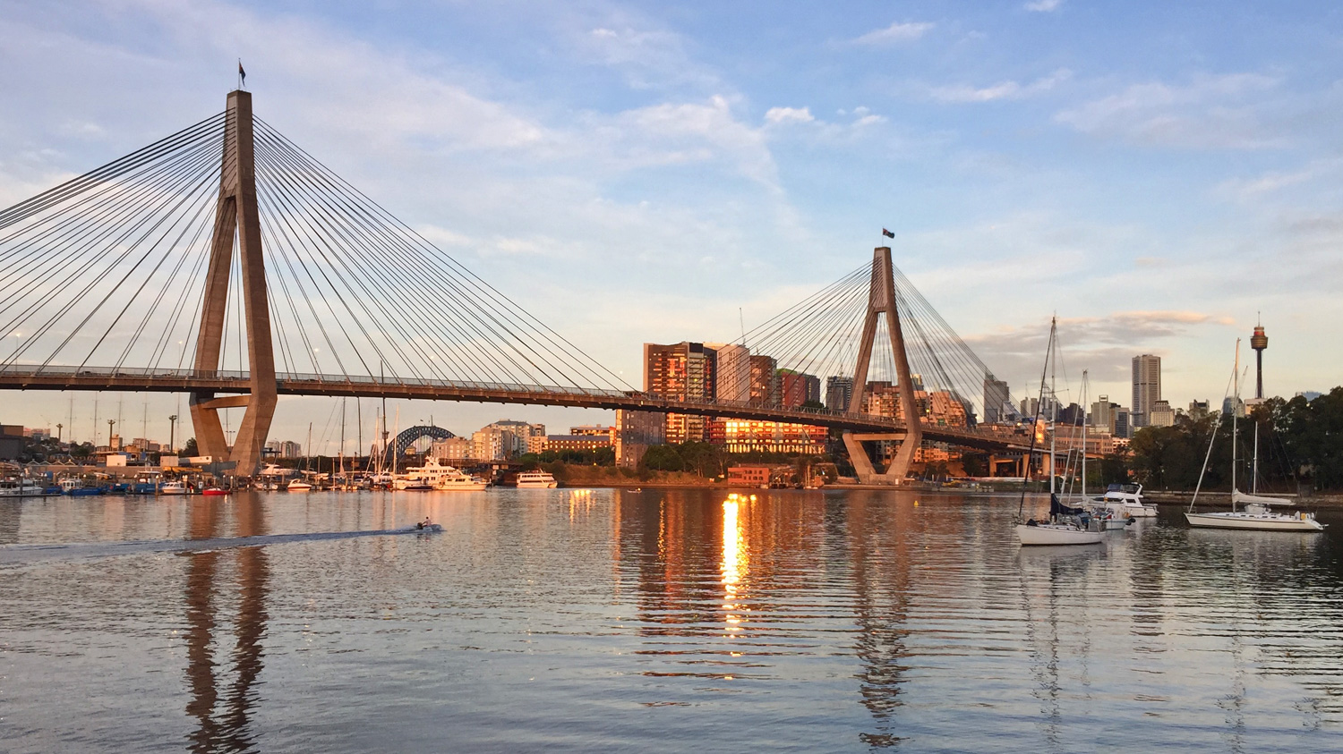 The Anzac Bridge viewed from the walk.