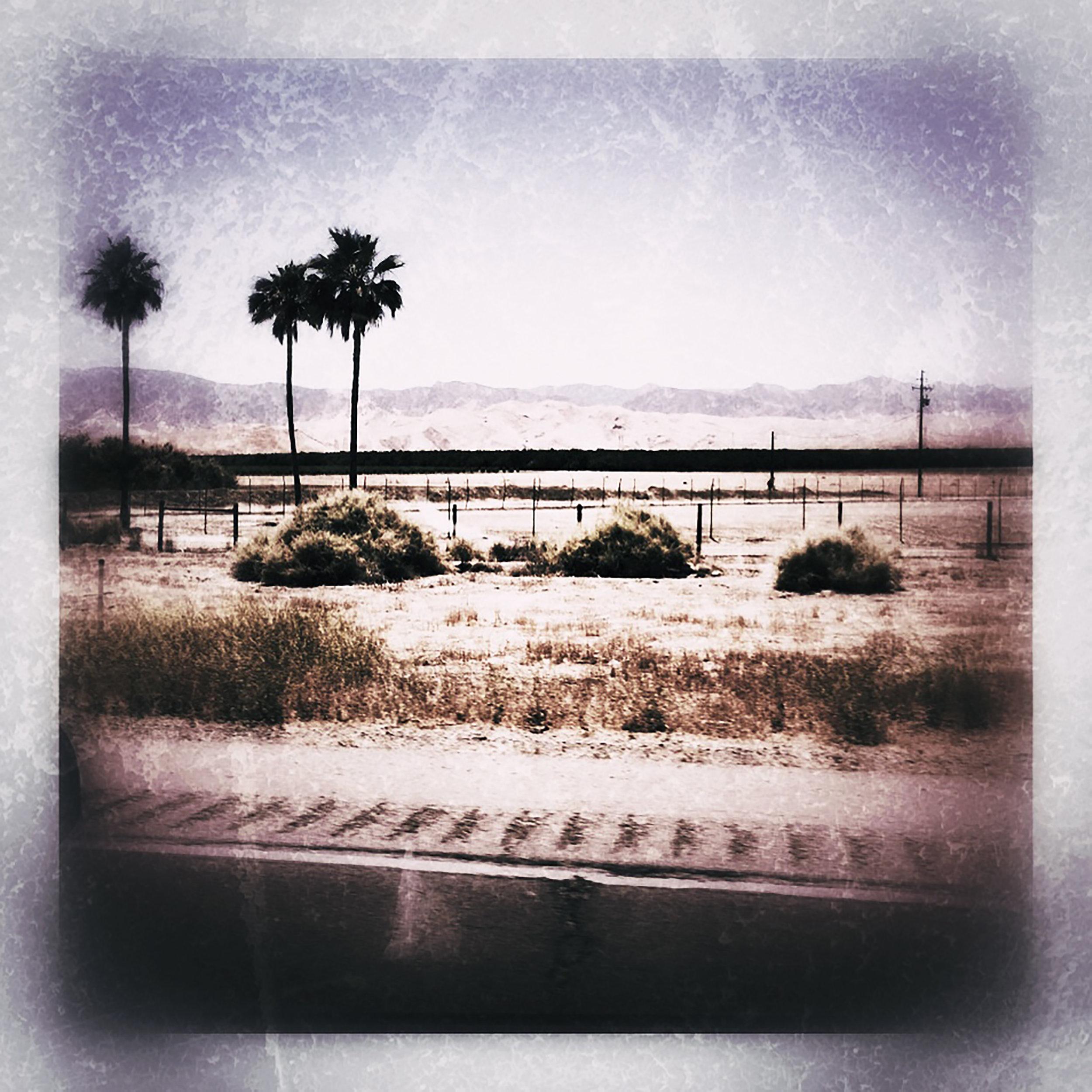 desertroad.jpg