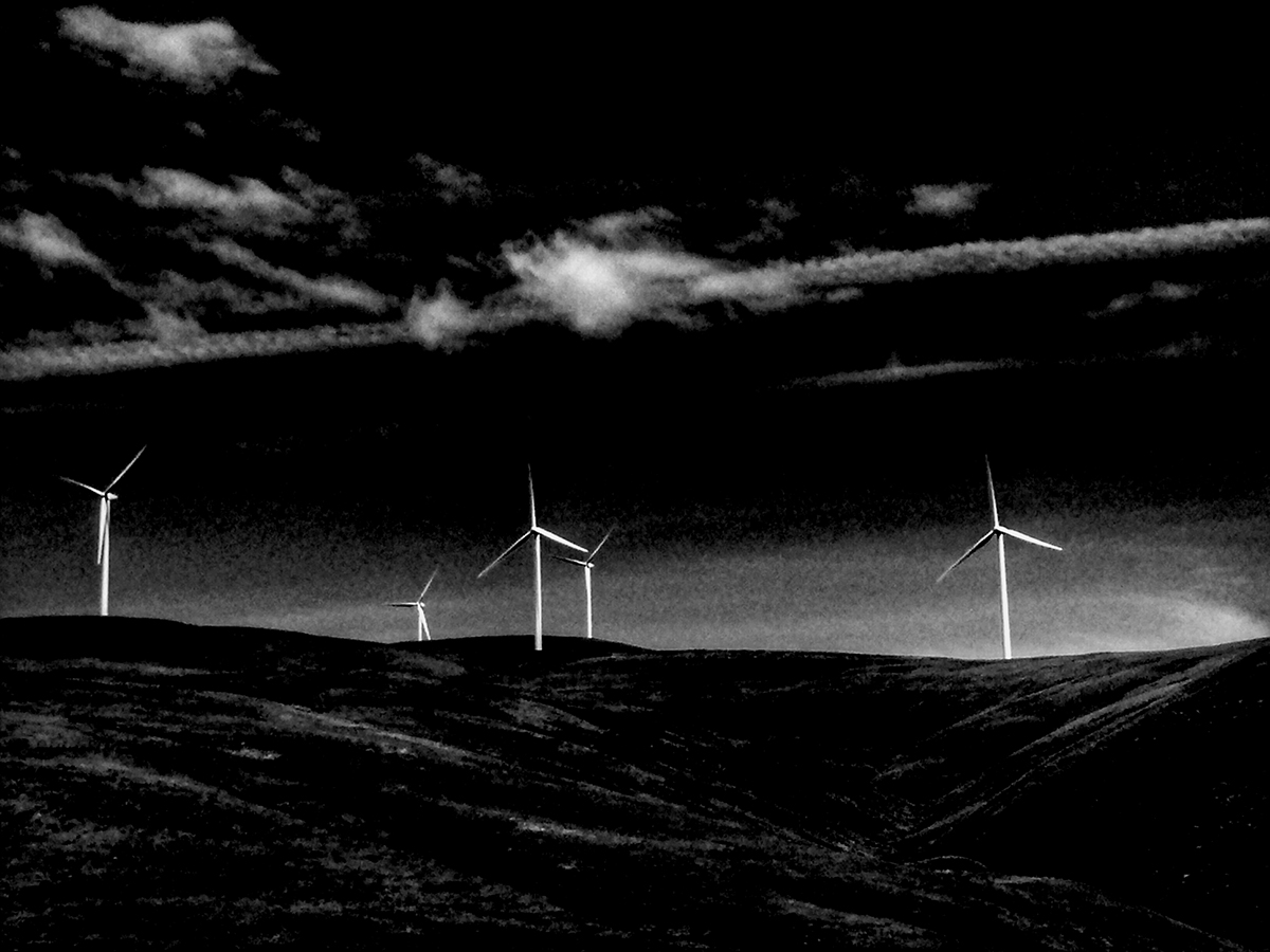 windmillsbw.jpg