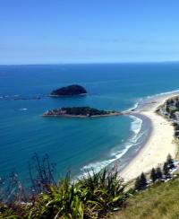 New Zealand Summer
