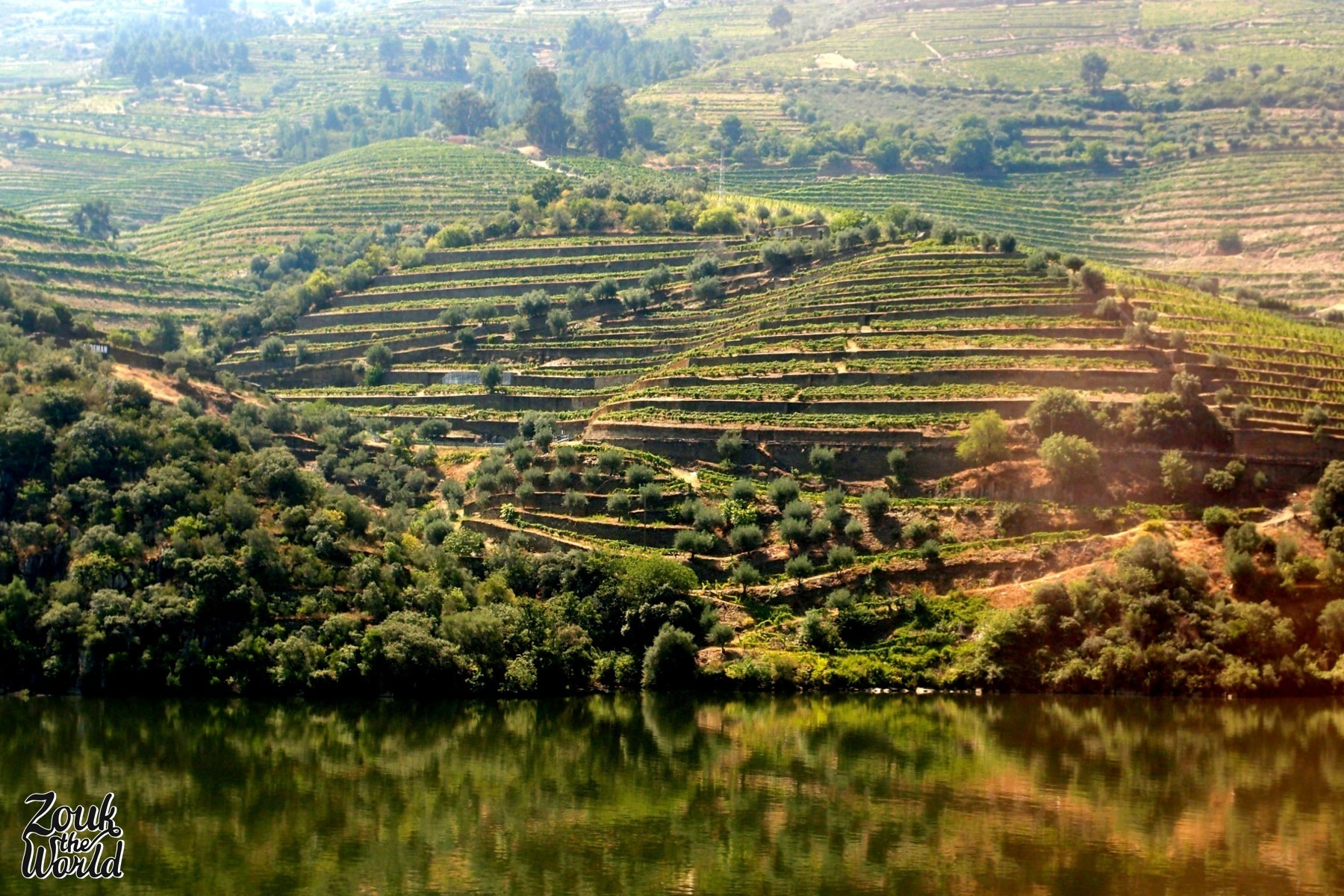 The views of the river and the vineyards along the way from Porto to Pinhão were beautiful!