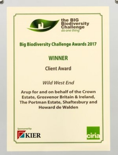 Award Category:  Client Award   Awarding Body:  the BIG Biodiversity Challenge   Project : Wild West End   Partner:  Arup, The Crown Estate, Grosvenor Britain & Ireland, The Portman Estate, Shaftesbury and The Howard de Walden Estate   Year:  2017