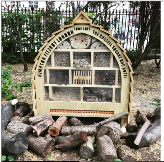 Russell Square Gardens - New Insect Hotels.