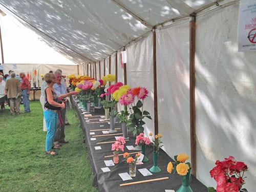 Horticultural-show-5.jpg