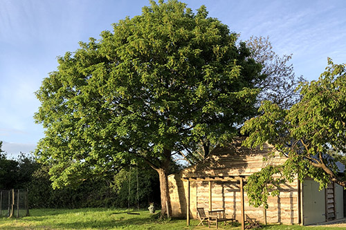 garden-cotswold-way-self-catering-holiday-cottage-broadway-worcestershire.jpg