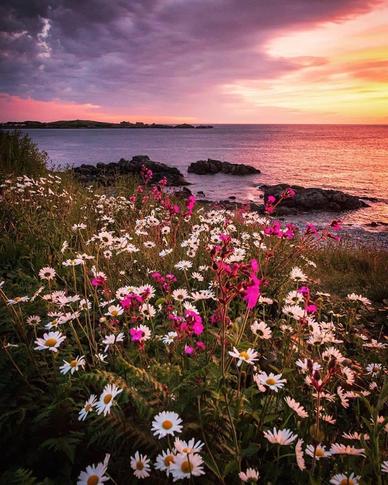 Jamie Le Tissier north coast.jpg