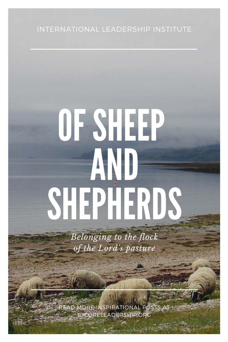 of sheep and shepherds.png