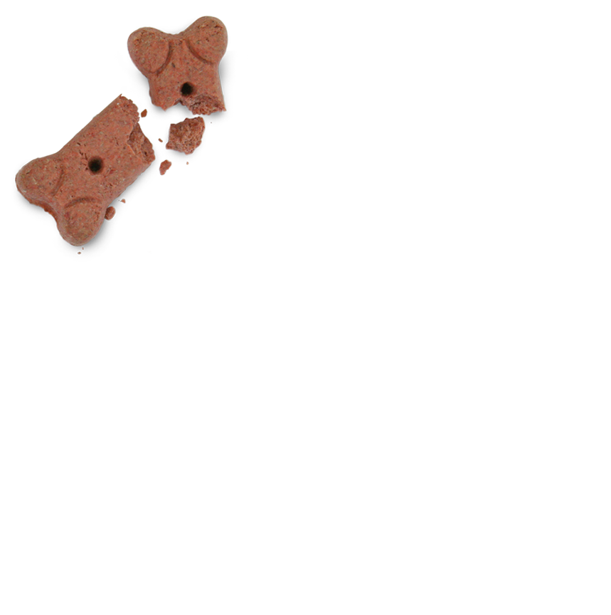 FF_DogTreat_001Small.png