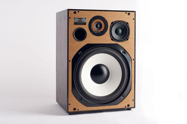Birch-Speaker-Without-Grill.jpg