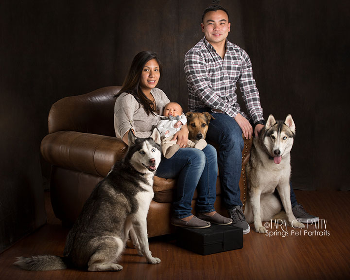family-with-dogs-for-family-pictures-Colorado-springs-family-photographer.jpg