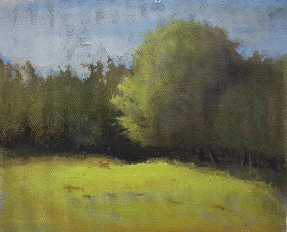 Martin's Meadow