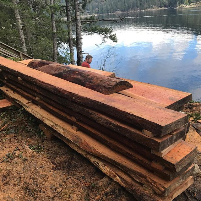 Had a chance to go back to Gambier Island to finish chainsaw milling a few Douglas fir trees I fell two years ago. Ready to make into tables bench's roof beams deck planks or deck beams, lots of potential sit here for my good friends to use. #doulasfir #slabs #chainsawmill #localwood #coastalliving #funwithsaw #geterdone