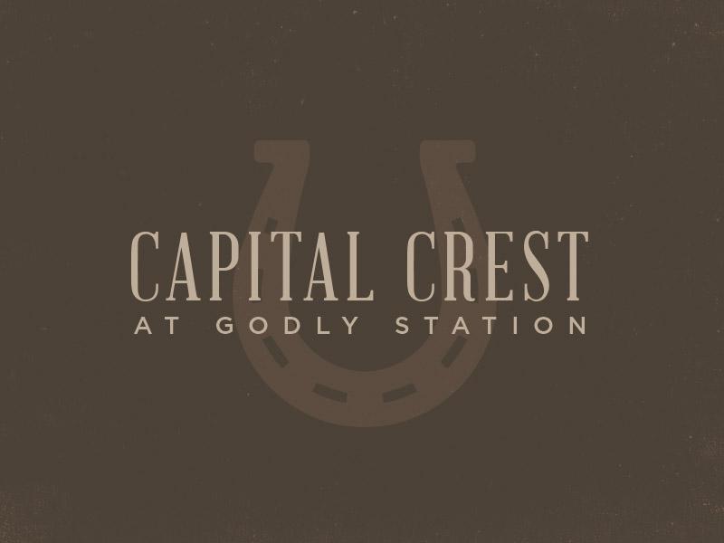 Cap Crest W3.jpg