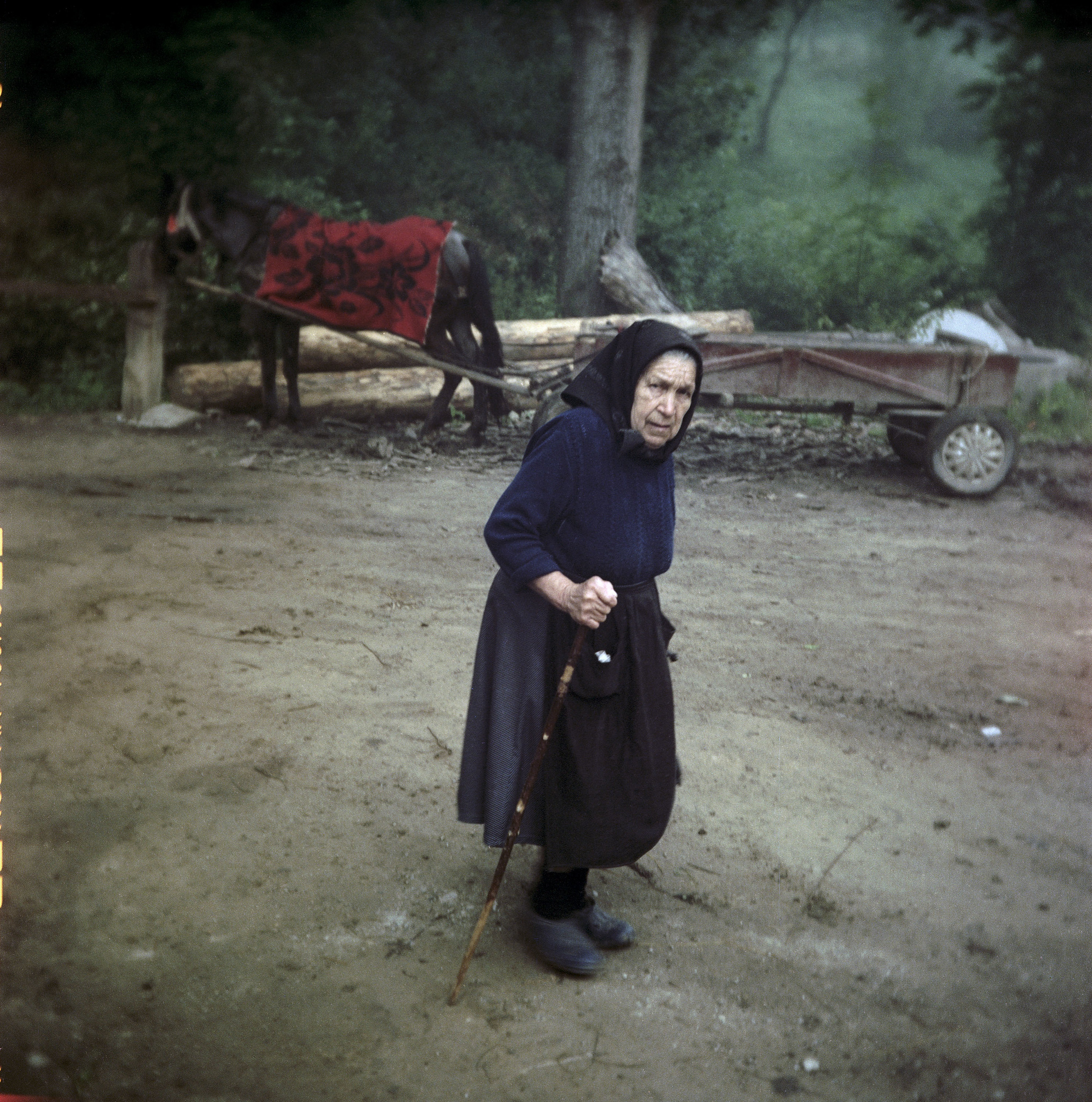 Untitled (Siklód, Romania, 2005)