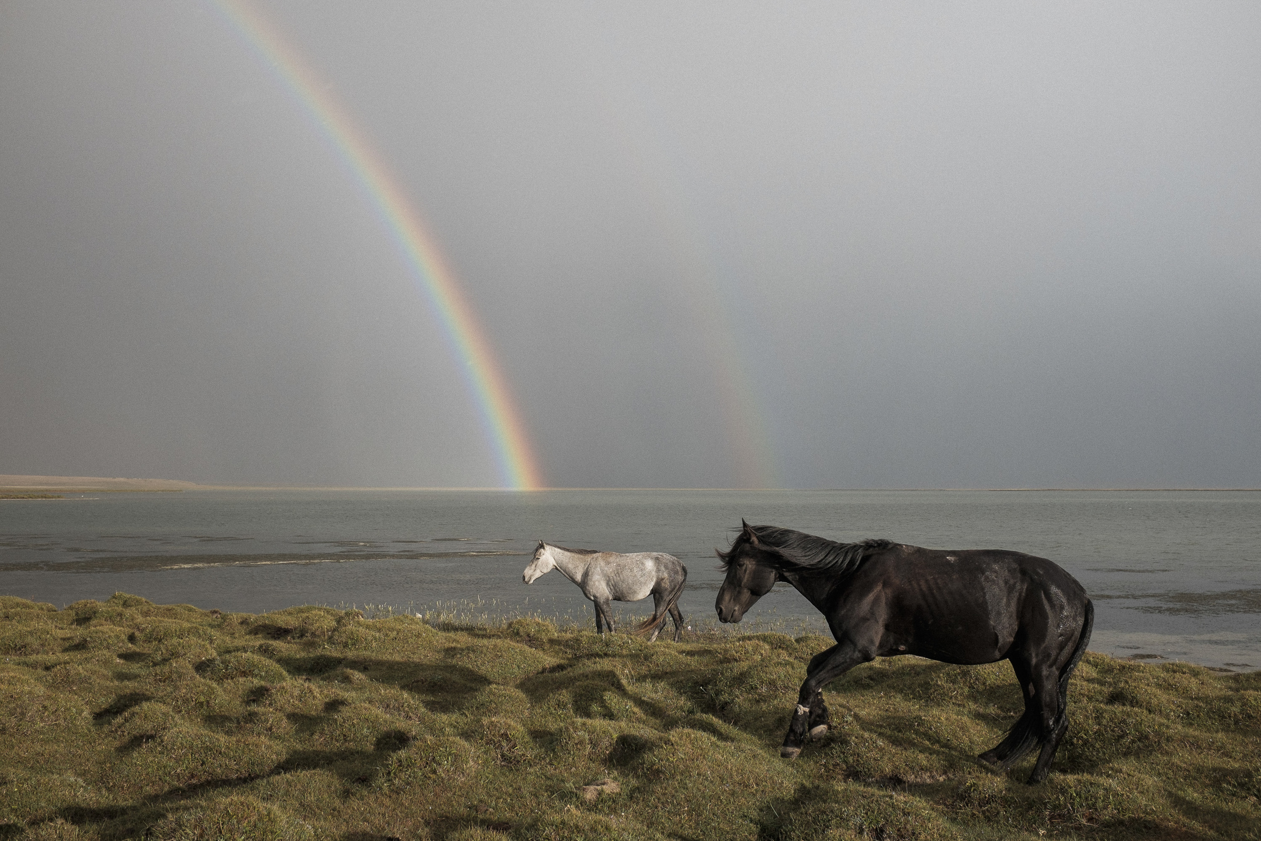 Rainbows, horses, 3000 metres above sea level, storm, Song-Köl lake. What else? Overnight in a Yurt, we did it with Paul.