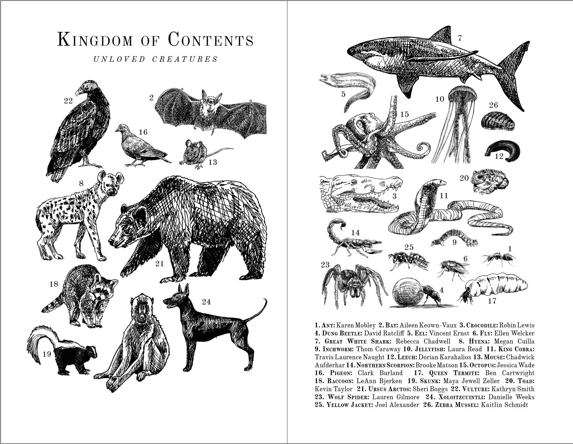 Kingdom of Contents