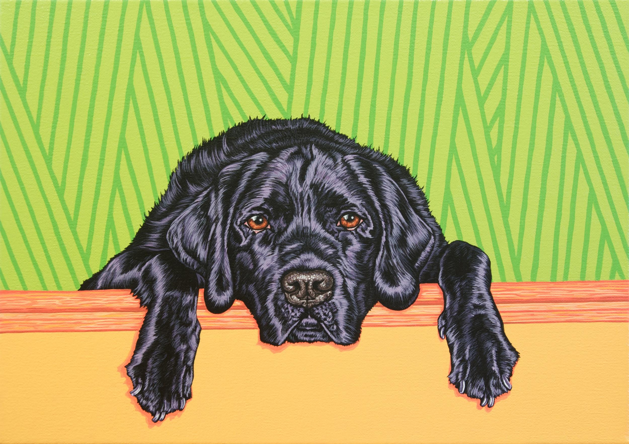 """Brady"", latex enamel on canvas, 14""x 20"", 2014"