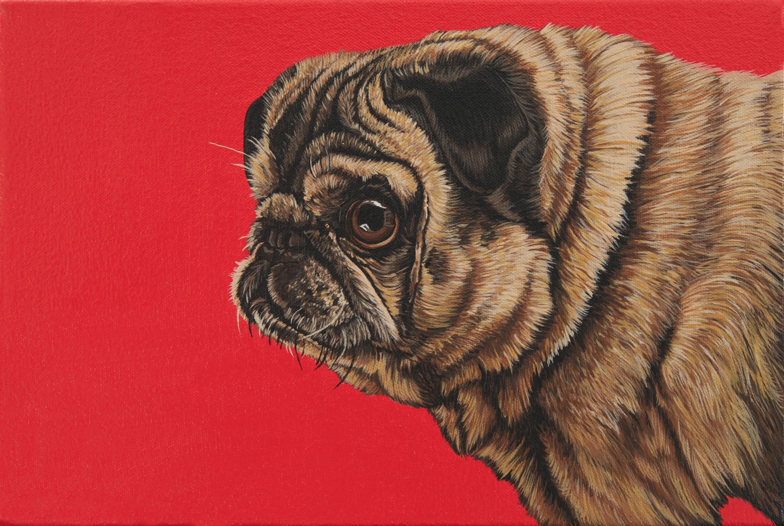 """The Rare Pugerpillar"", latex enamel on canvas, 8""x 10"", 2013"