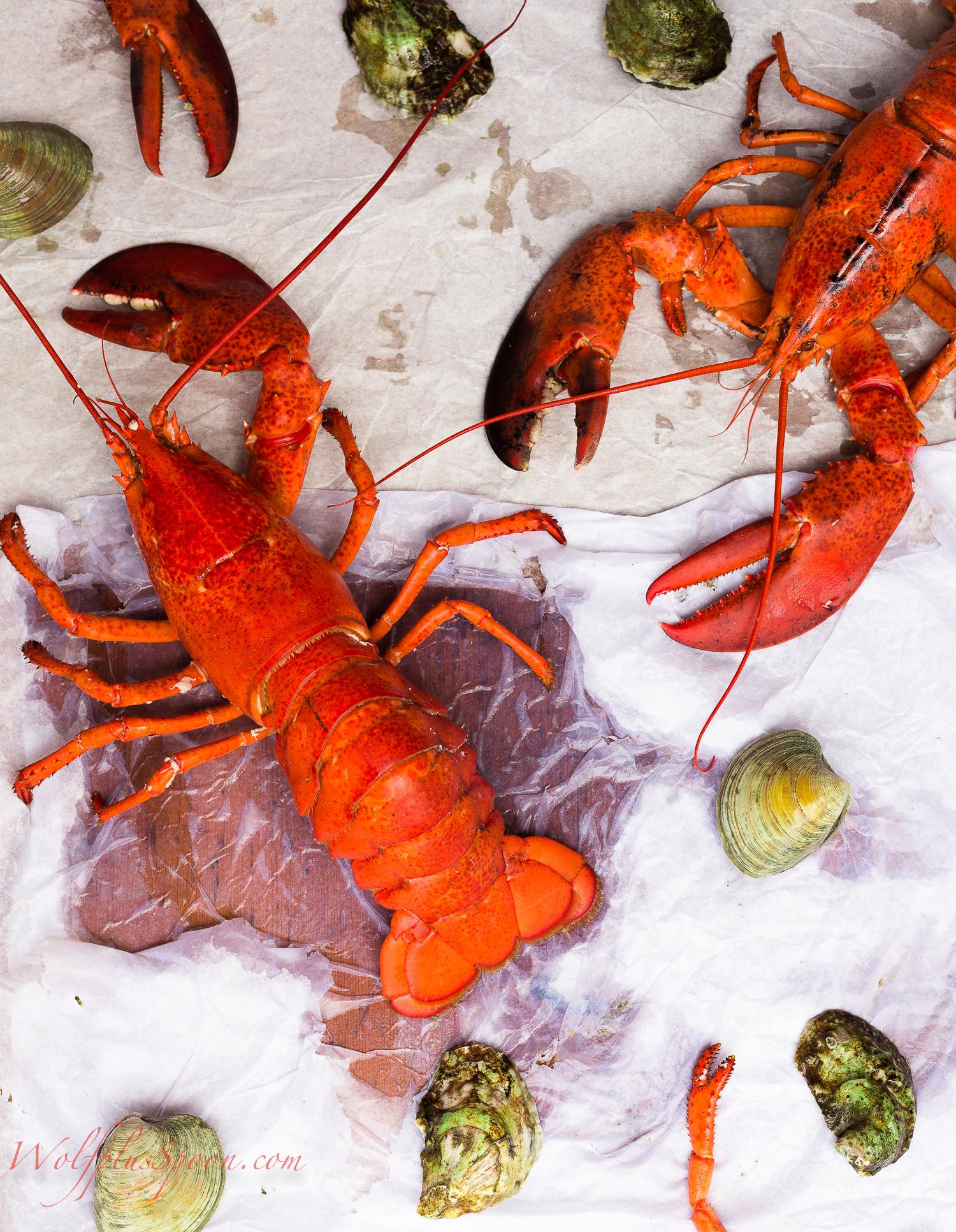 lobster salad_-023.jpg