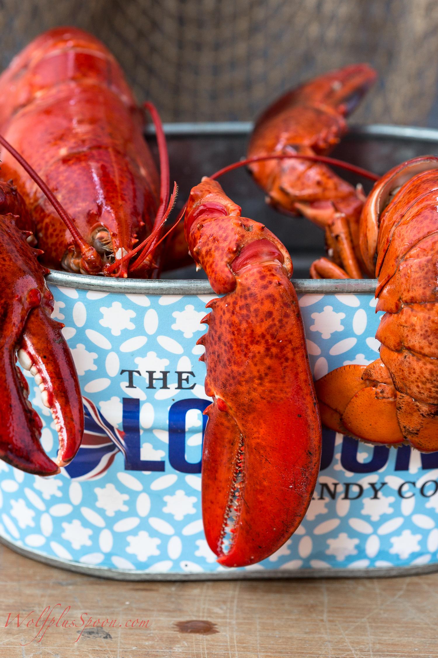 lobster salad_-002.jpg