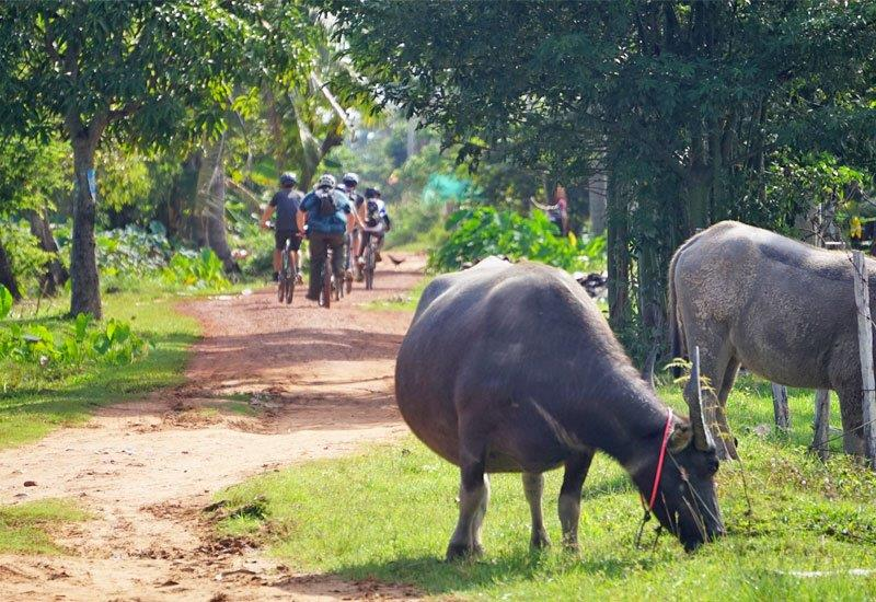 siem-reap-countryside-cycling-tour.jpg
