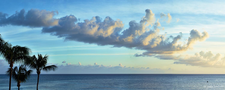 Grand Cayman 4 Alpa STC•IQ140•SK120ASPH