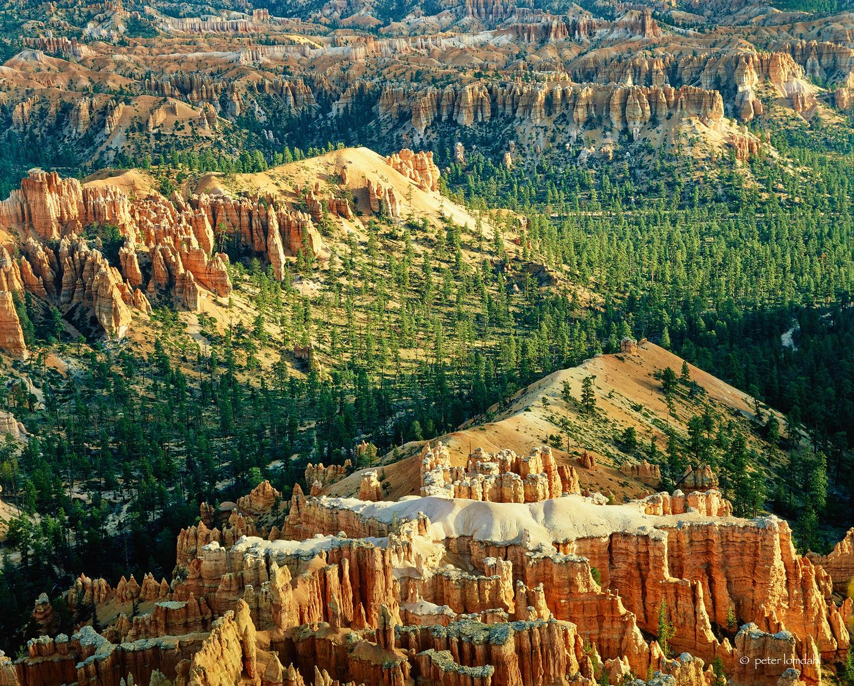 Bryce Canyon, UT Canham DLC 4x5 • RVP• SK210