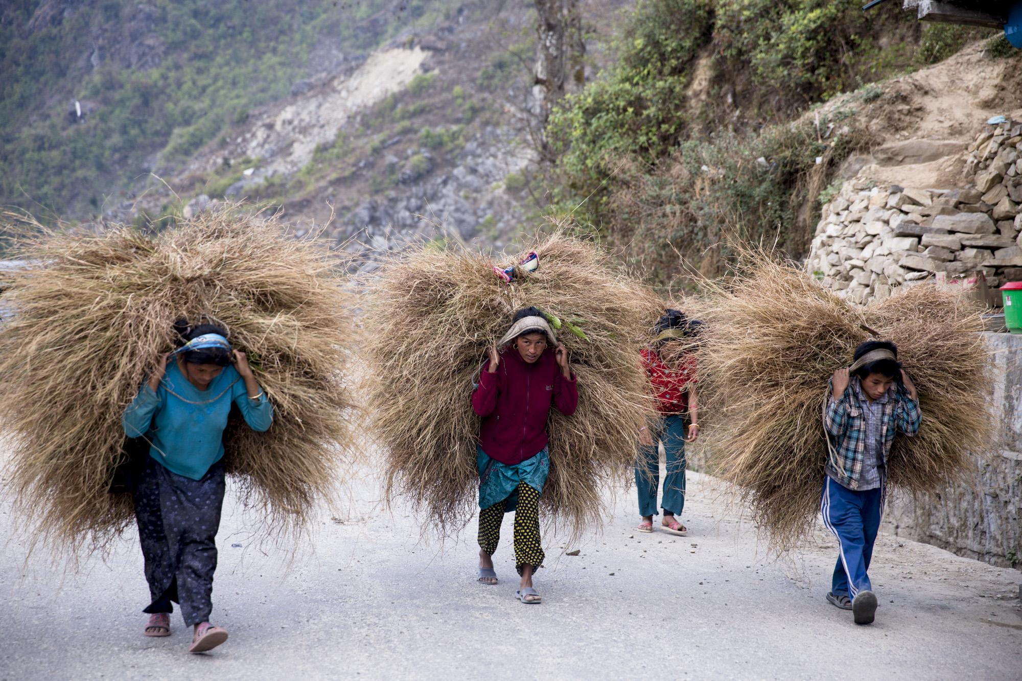 nepal_lineharklau_161.jpg