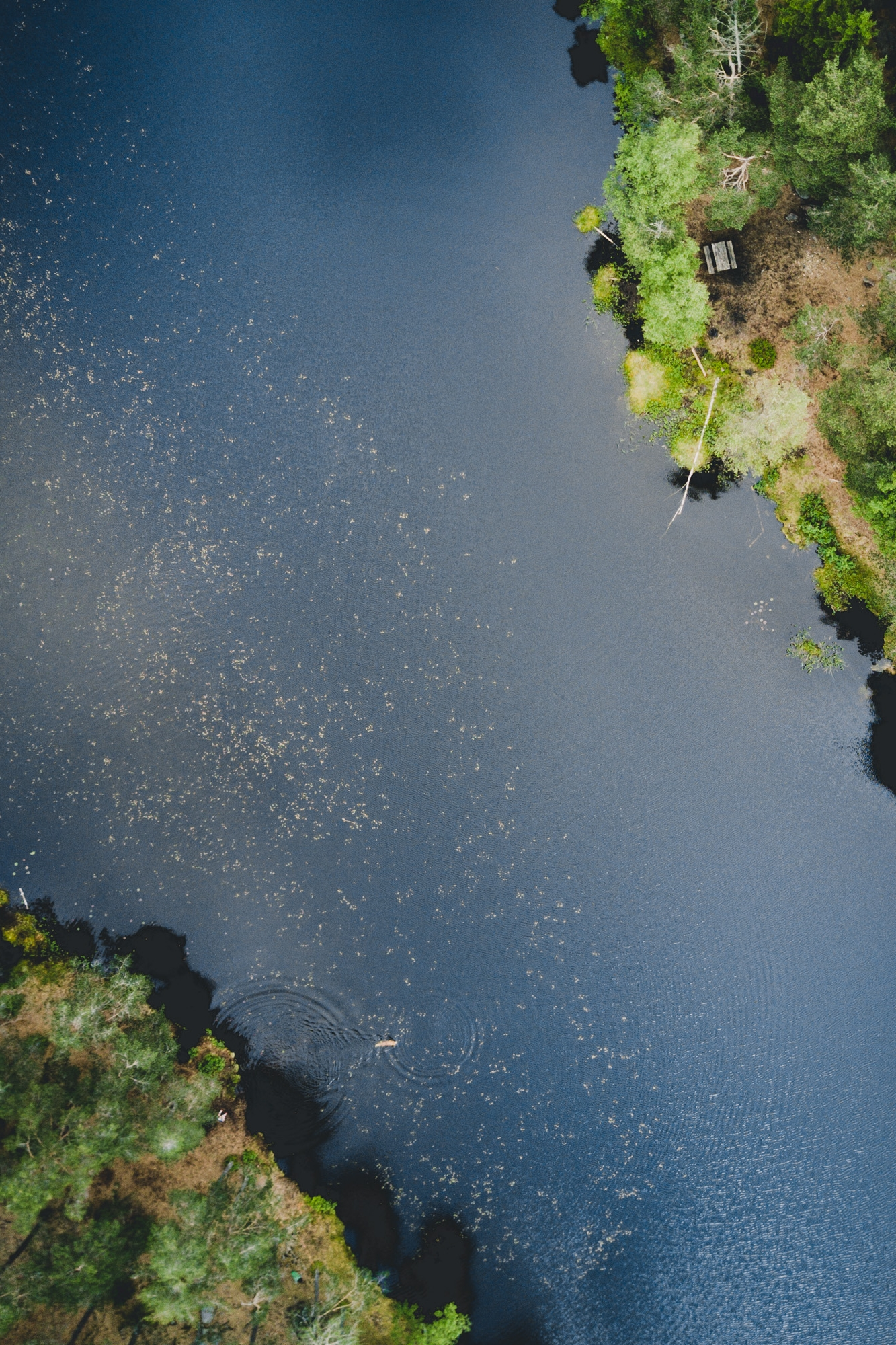 drone 26.06.17-1.jpg