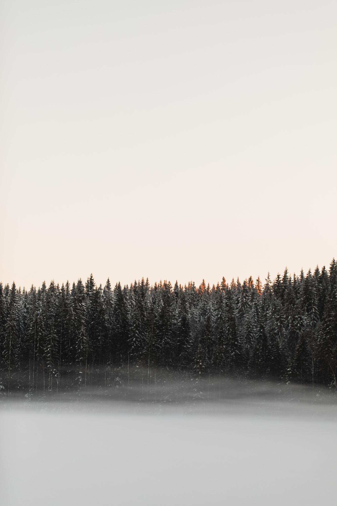 fagervann ski-4.jpg