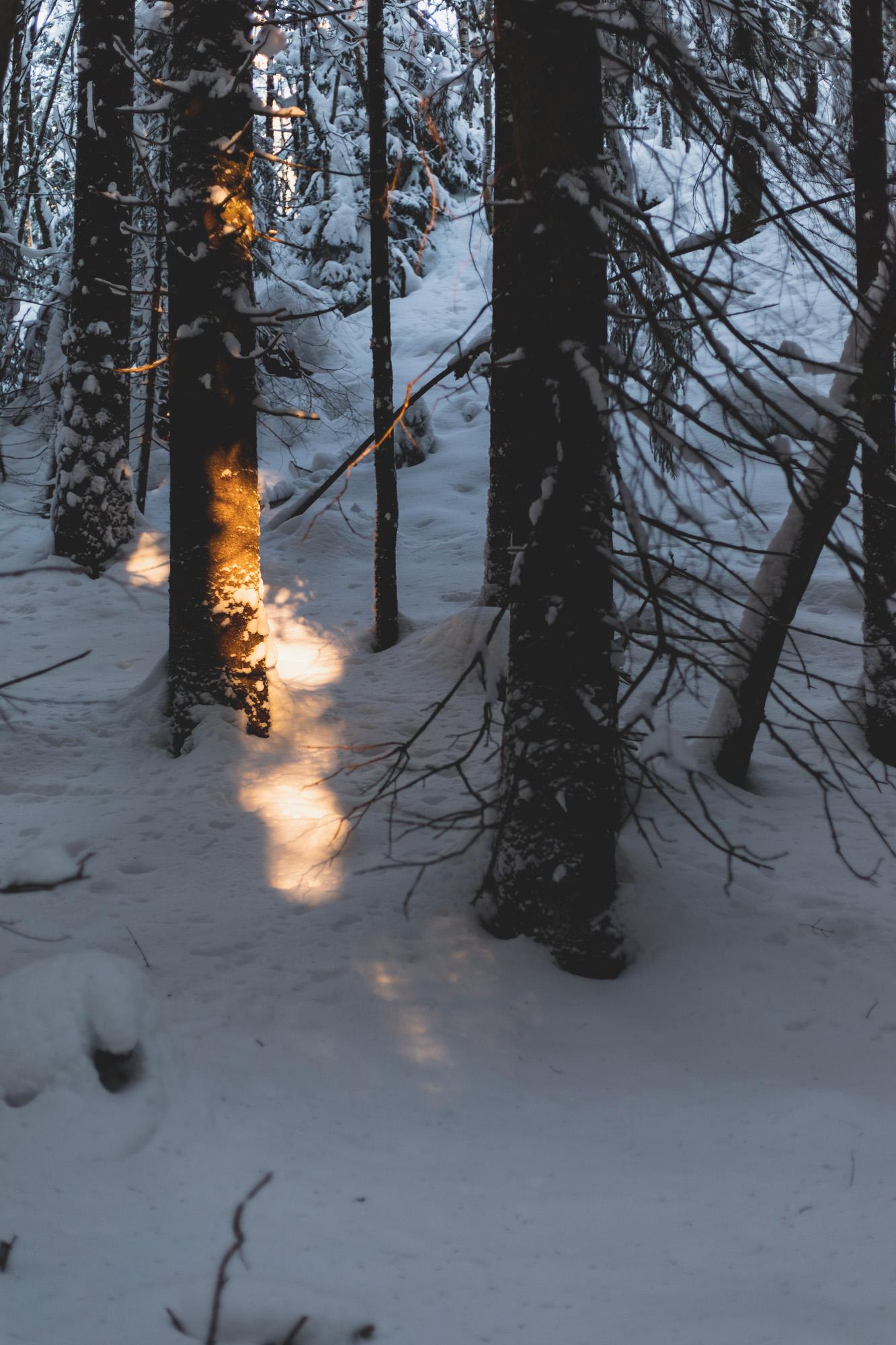 fagervann ski-3.jpg