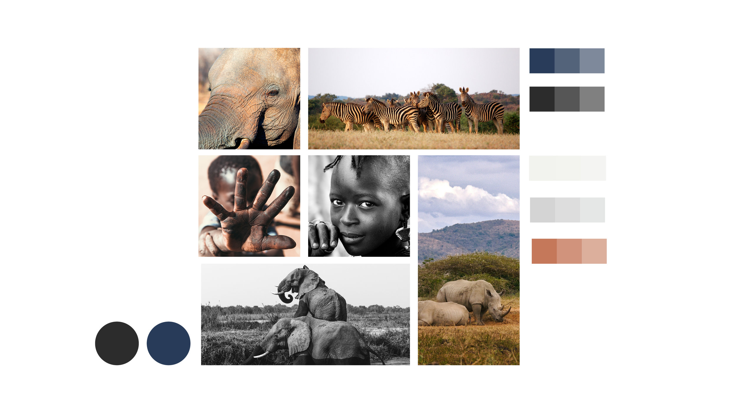 Roam Africa Adventures is owned and operated in Tanzania. Stephanie Wencl created a squarespace site for the start-up business to promote the travel expeditions, to outreach though social media, and to complete online bookings.