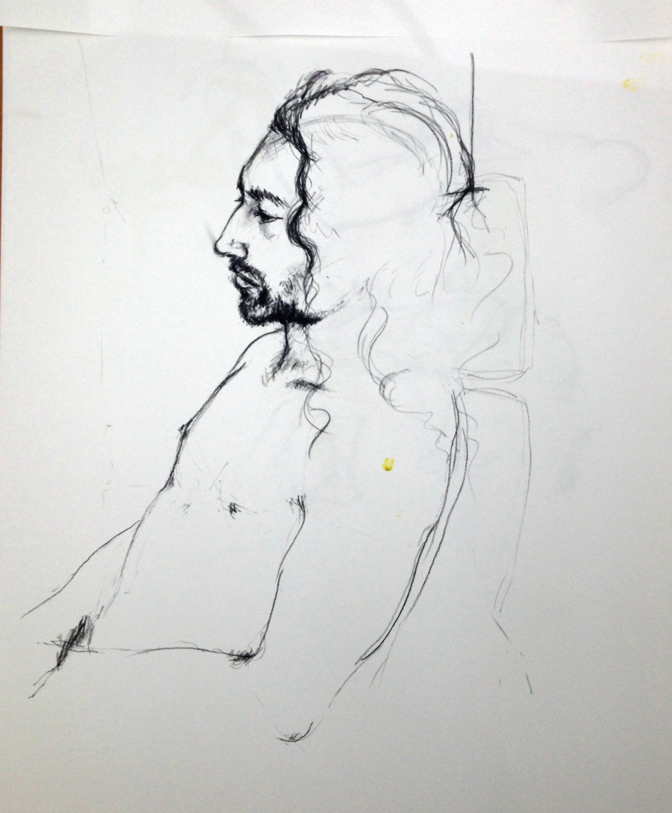 One of my first Life Drawings of Felix. November 2014.