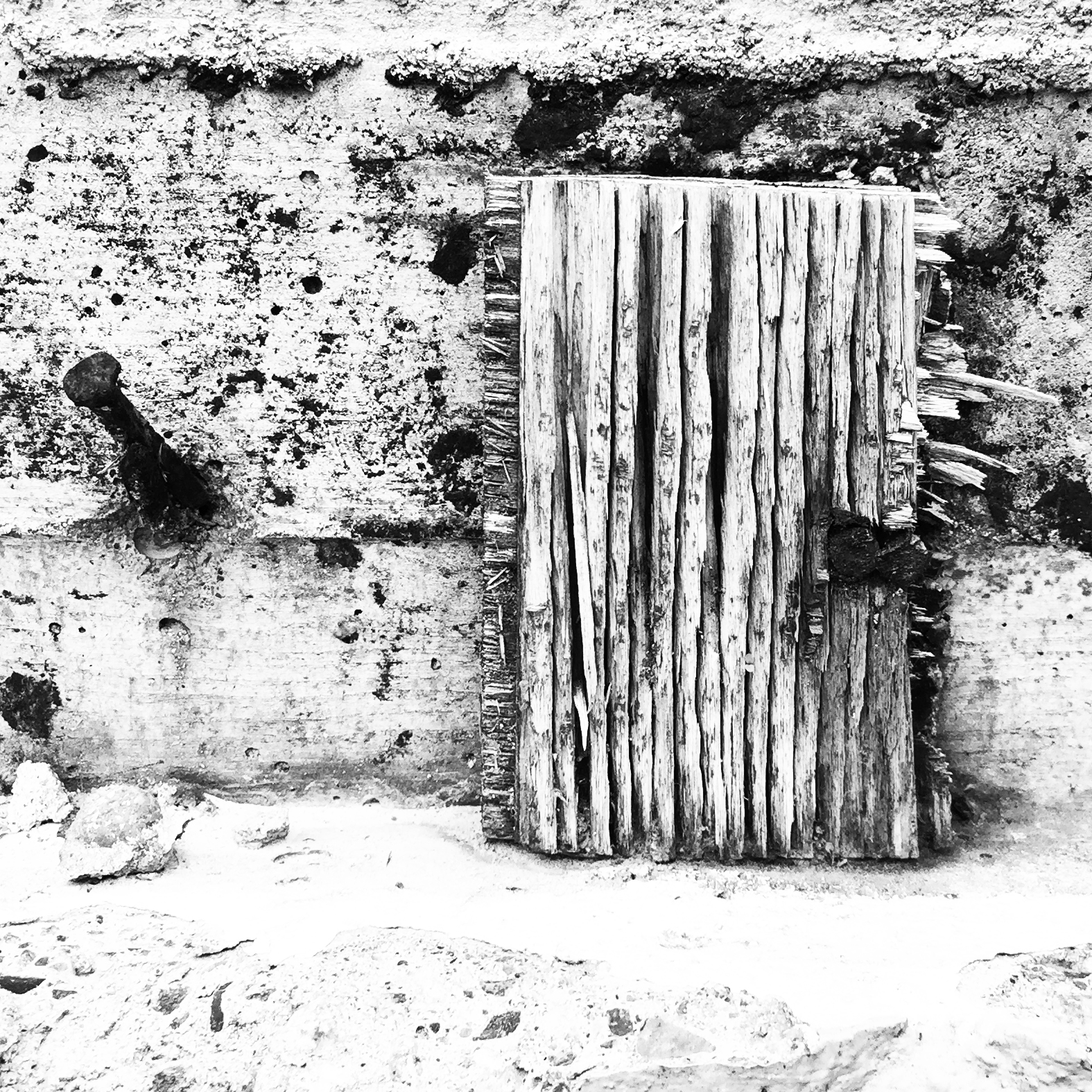 A weathered scrap of plywood on foundation wall. Image by Leif Shepard.