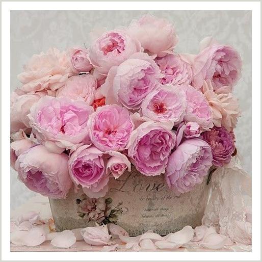 Debra Schaffer-Custom-Blend-Spray-Roses.jpg