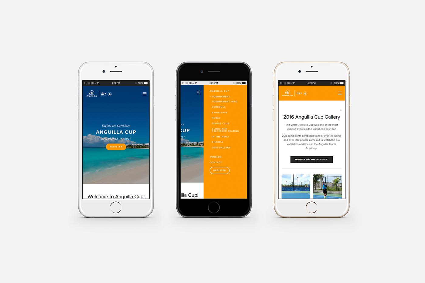 anguilla-iphone.jpg