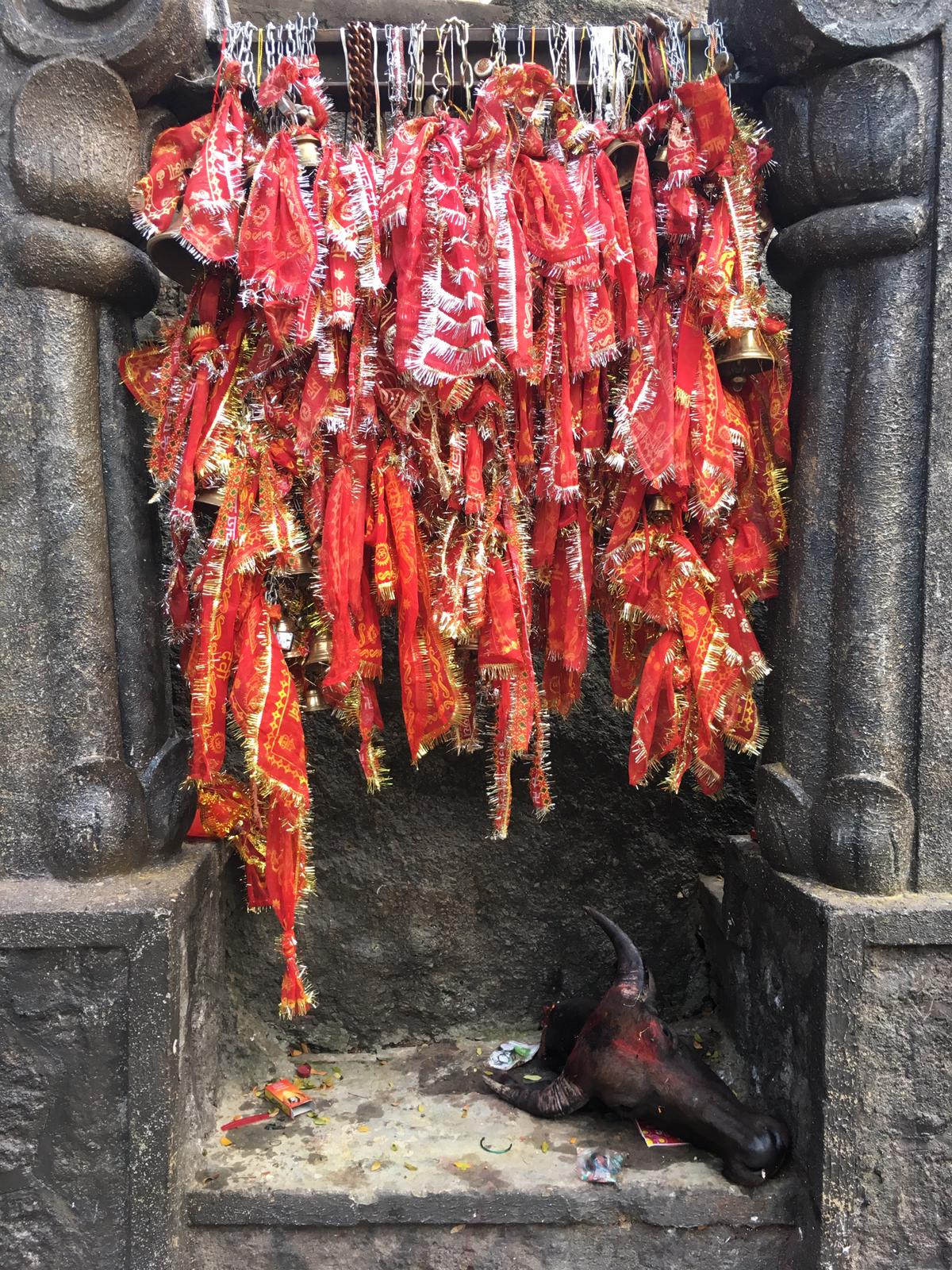 Offering in Kamakhya temple