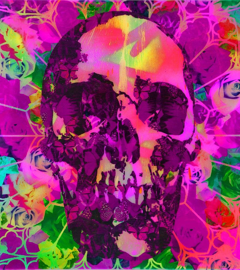 Ben Allen_Psychedelic skull.UII2014.jpg