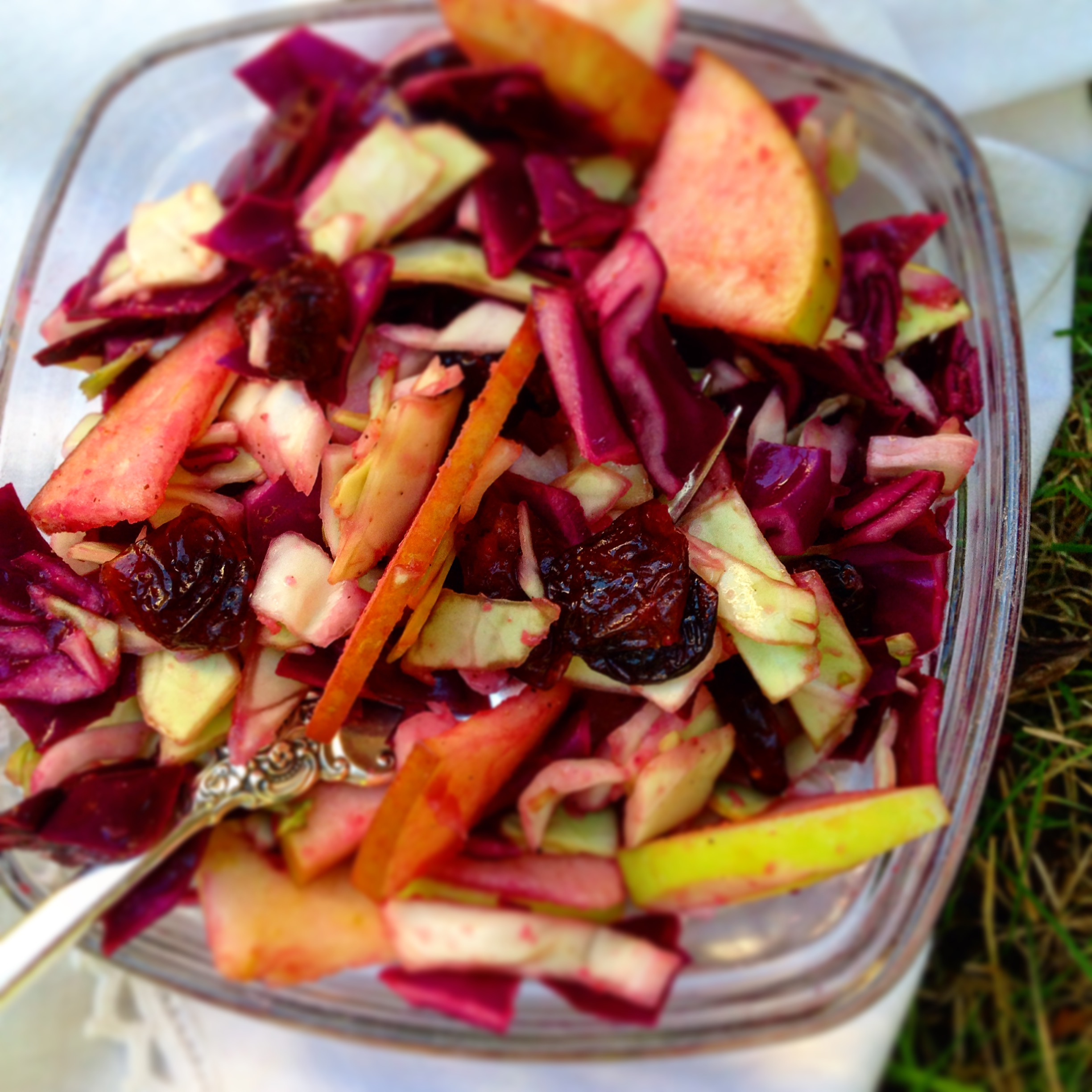 Apple Ginger Cranberry Slaw