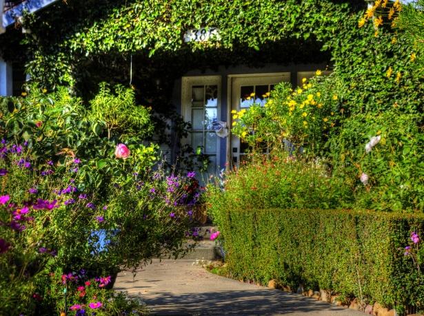 lush-garden-1541686875Hks.jpg