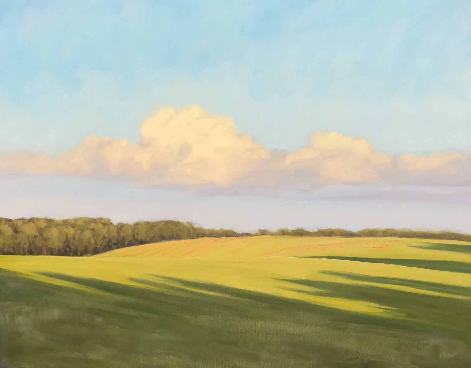 MT.new landscape1.JPG