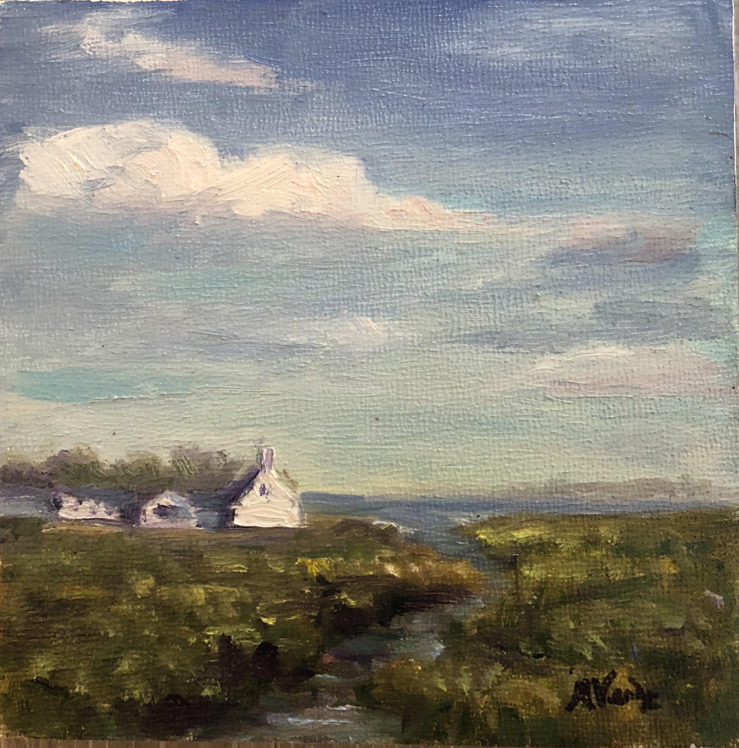 Farm with Marsh