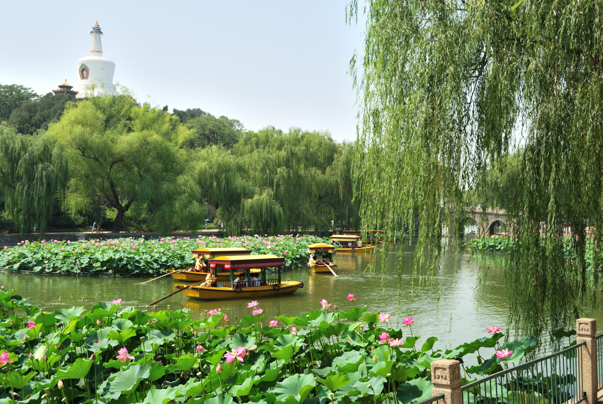 Asian paradise <3