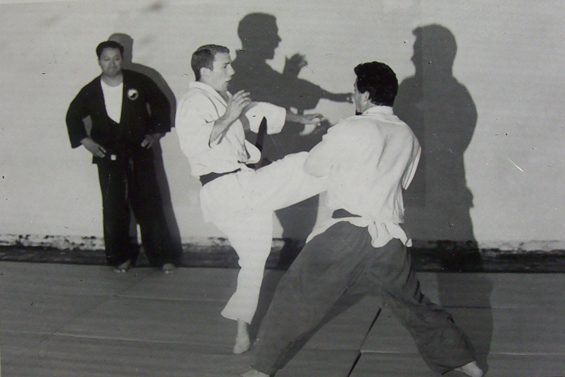 Dad Jujitsu (2).jpg
