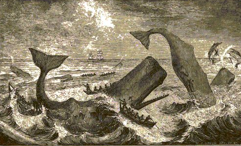 Moby-Dick illustration by Everett Henry