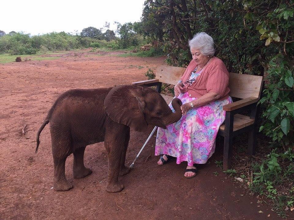 ©Daphne Sheldrick Wildlife Trust