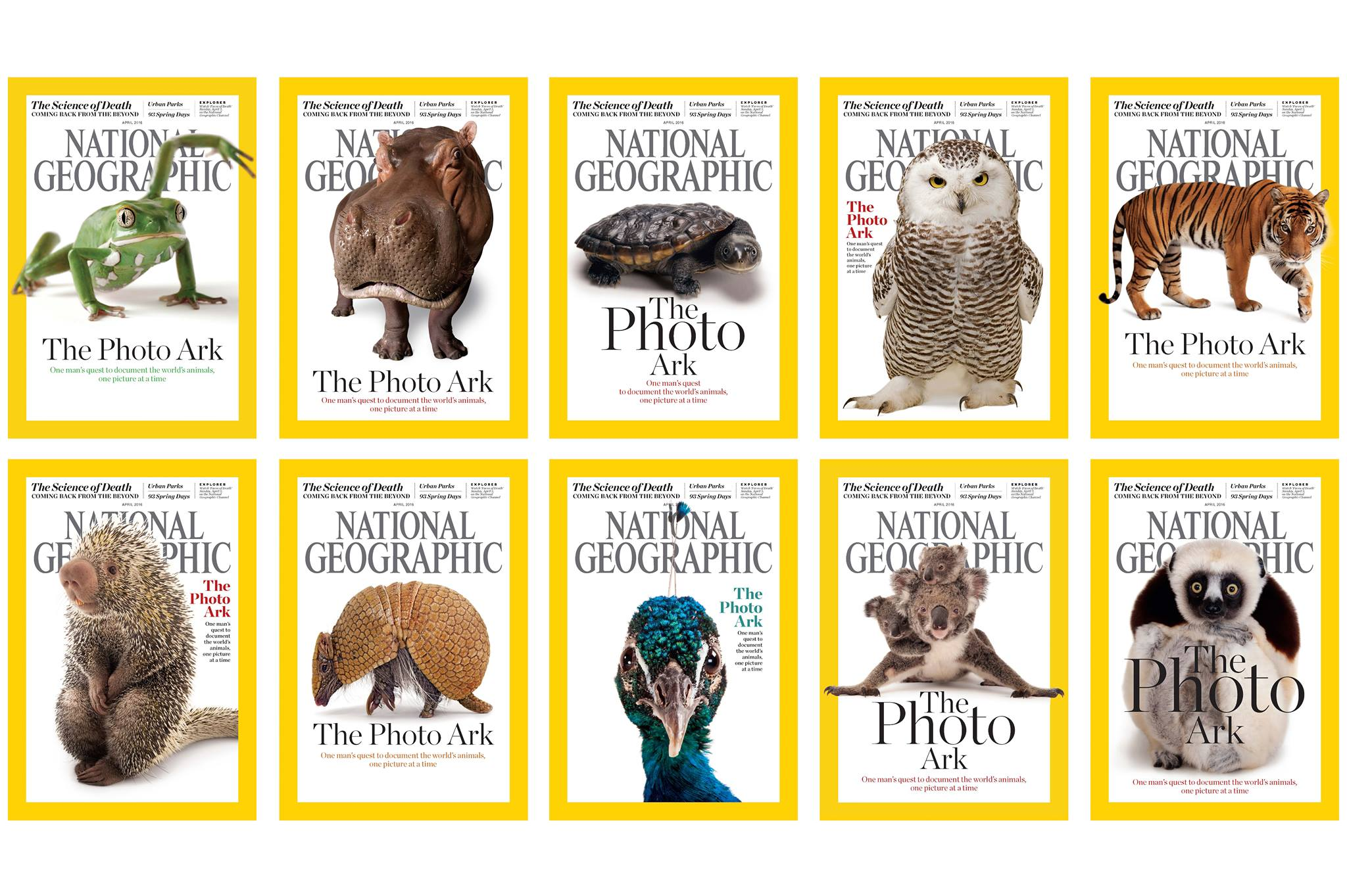 National Geographic  Photo Ark covers. ©2017 Joel Sartore