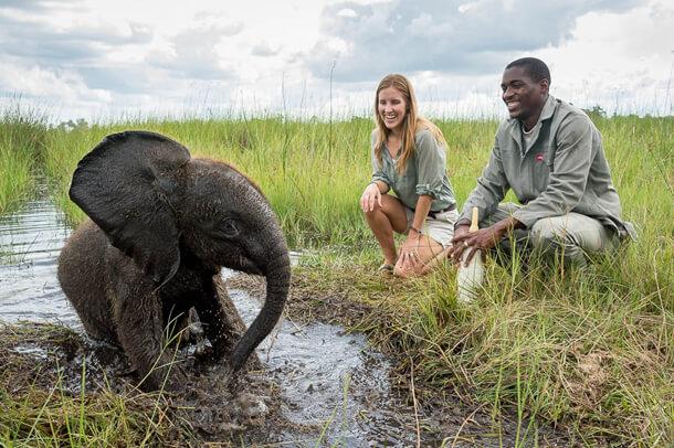 ©Wilderness Safaris