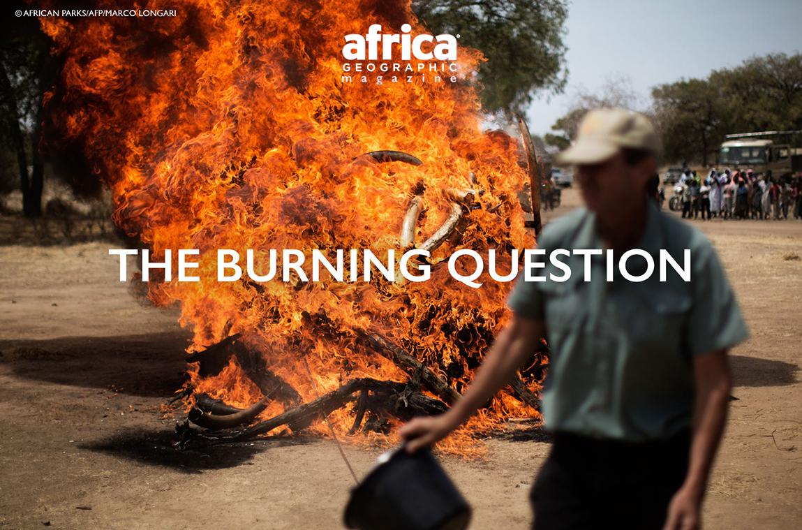©African Parks/AFP